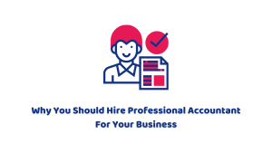 Why You Should Hire Professional Accountant For Your Business
