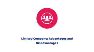 Limited Company: Advantages and Disadvantages