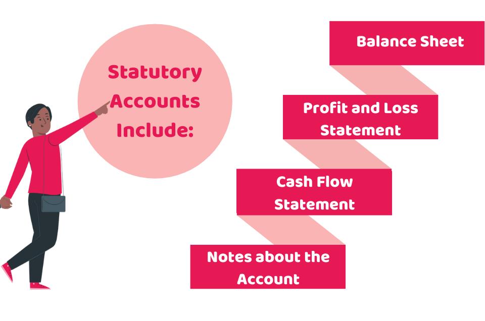 Statutory Accounts Small Businesses