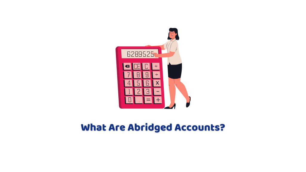 What Are Abridged Accounts