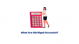 What are Abridged Accounts? A Basic Guide