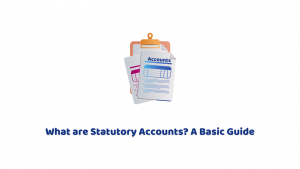 What are Statutory Accounts and What's Included in Them?