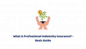 What is Professional Indemnity Insurance? – Basic Guide