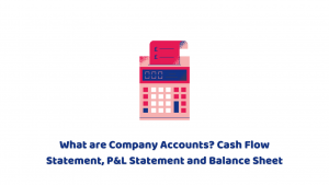 What are Company Accounts? Cash Flow Statement, P&L Statement and Balance Sheet